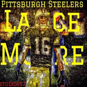 Lance Moore has signed with the Detroit Lions