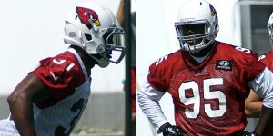 David Johnson and Rodney Gunter are two steals that will shine in Arizona for the Cardinals.